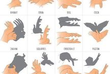 learn shadows with your hands