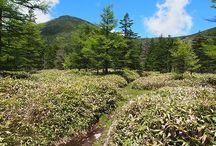 蓼科山(八ヶ岳)登山 / 蓼科山の絶景ポイント 八ヶ岳登山ルートガイド。Japan Alps mountain climbing route guide