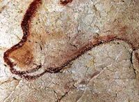 Пещера Шовэ. Grotte Chauvet.
