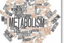 Boost Your Metabolism / Metabolism is the body's engine