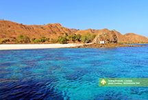 Sailing Komodo - Lombok [operator : Berangan Trip] / November 14 - 17, 2013 Pulau Moyo, Taman Nasional Komodo, Pulau Satonda Link : http://triptr.us/sO
