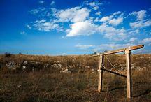 Gate - Ram (Sculpture) / Wood - Iron - Rope Height: 149cm Length: 141cm Width: 240cm