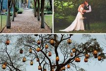 Meryls wedding