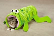 Cool Cat Toys / Cool cat toys help keep your kitty active and healthy. Ideas to help you make cat toys or find cool ones online.