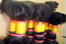 Human Hair  /  Indian Remy Virgin Bulk Hair, Indian Remy Virgin Single Drawn, Hair, Indian Machine Wefted Hair, Indian Hand tried Weft Hair, Micro loop Weft Hair, Keratin Extension, Pre-bonded Hair, Clip-on Extensions, Bleached Hair in a range of colors, Skin Weft Hair, etc www.hairexim.com