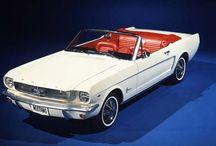 Mustang Tarihçesi