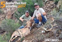 HuntAoudad.com Giveaways