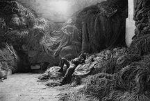 Sebastião Salgado - I grandi fotografi e l'Italia