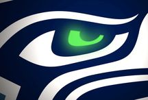 Seahawks!!!! Oh, and other football stuff / by Tracy Wetsch