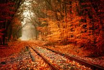 Évszakok: ősz