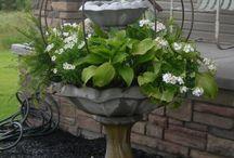Outdoor container-gardening