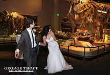 Perot Museum wedding photos
