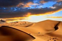 Dans le désert, In the desert, Deserto / by Yves Landry