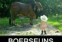 Boere en Afrikaans