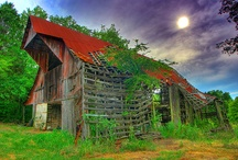 The Barn Door / by Lori Smith Woodward