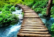 """Bridge Over Troubled Water / """"The hardest thing in life is to know which bridge to cross and which to burn"""" ~ David Russell / by Janine Renberg"""