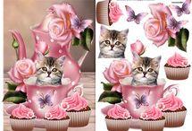 3D Katte