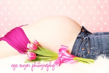 Maternity Gallery / Celebrate the beauty of Pregnancy...  A gallery of maternity ideas that inspire me as a photographer.  / by Wendy Campo Photography
