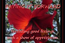 PAYING IT FORWARD with GRATITUDE / Spotlighting those who have helped me / by Gail Baugniet