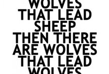 wolves saying