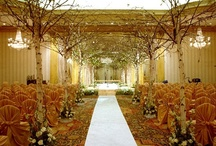 Ceremony Aisle / by Jill Myers