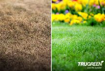#SpringIsComing: Spring Lawn Prep / Spring prep tips for an envy-worthy lawn.