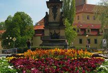 Poděbrady- první písemná zmínka z roku 1223 / V místě dnešního města bylo nalezeno osídlení už z doby mladého paleolitu. Král Přemysl Otakar II. zde v letech 1262–1268 zbudoval kamenný hrad, postupně přebudovaný v dnešní zámek. K velkému rozkvětu panství došlo za pánů z Kunštátu. Nejznámější představitel tohoto rodu byl český král Jiří z Poděbrad. Jeho synové Poděbrady roku 1472 povýšili na město. V letech 1495–1839 bylo poděbradské panství spravováno královskou komorou, poté ho koupil vídeňský bankéř Jiří Sina
