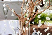 dekoracje na zewnatrz