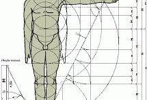 logarythme