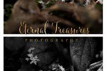 Eternal Treasures Photography nature