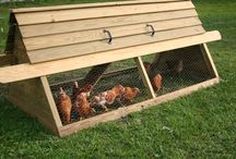 Chicken Coops / Looking for portable chicken coop ideas