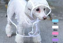 Pet capa chuva