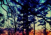 _Photos I Love_