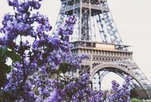 French dream ..*