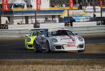 Porsche Sport / Wszystkie modele Porsche mają w sobie sportowe geny, ale niektóre trochę więcej ;)