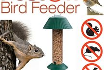 Squirrel Proof Bird feeder / The best squirrel proof bird feeder available - also large bird proof and rat proof