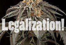 Legalization!