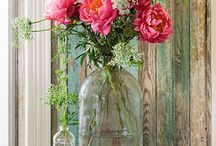 my lovely flowers