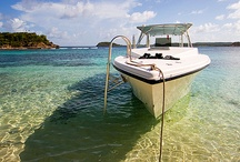 Vacation Ideas / travel