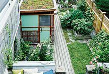 Tiny house w a tiny garden