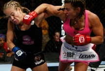 MMA & Boxing / The Best in the World of Fighting