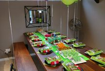 Riley's Minecraft party