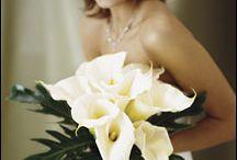 Mariage Contemporain minimaliste (portes ouvertes)