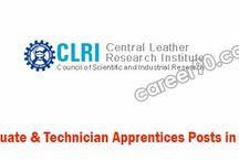 CLRI Posts