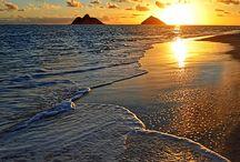 I wanna go to Hawaii