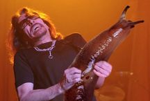 Guitar Solo Slugs! / Well, now we know why lead guitarists make those faces when they solo!