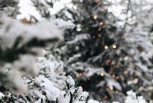 ❄️ Winter ❄️