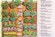 gardening / by Jessica Brubaker