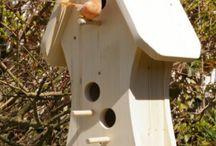 madáretető