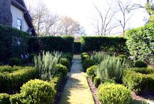 outside / Gardens, verdant scenes, pathways, plant combinations / by Kirsten Eamon-Shine